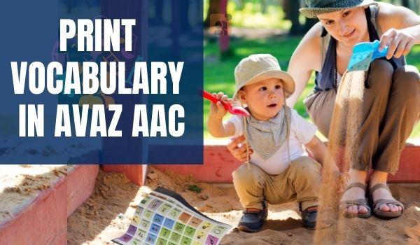 Avaz AAC Print Low Tech Book